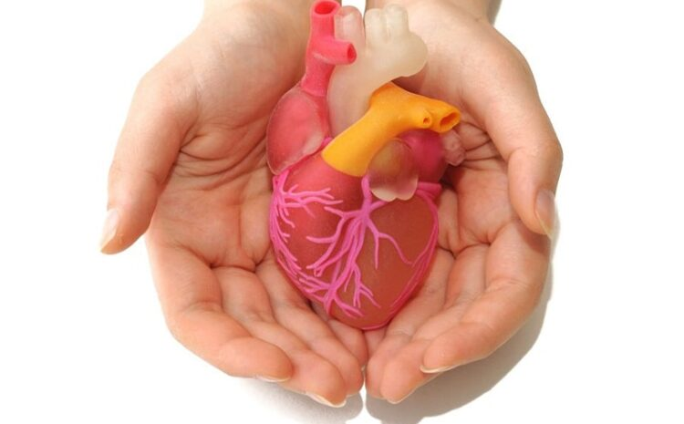 What is Heart Transplant, pre, and post-surgery care?